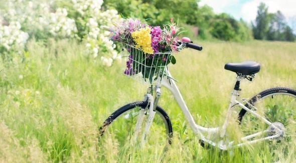 Enquête en ligne sur la pratique du vélo