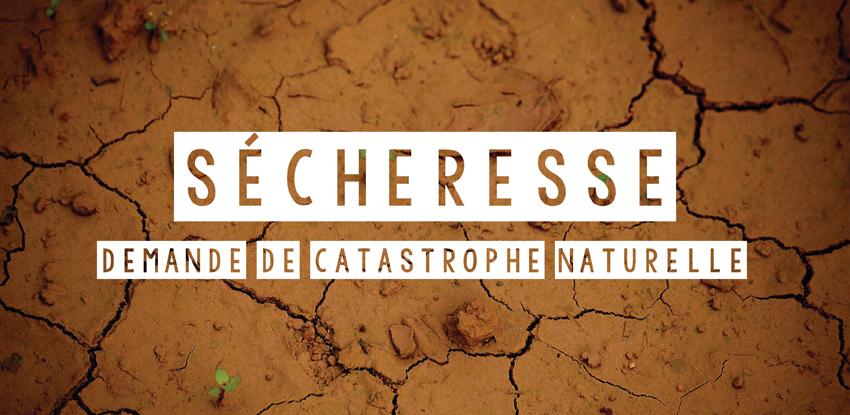 Sécheresse : Demande de catastrophe naturelle